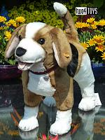 2018 Steiff 501043 NELLY THE BEAGLE © LIFESIZE DOG